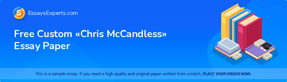 Free Essay Sample «Chris McCandless»