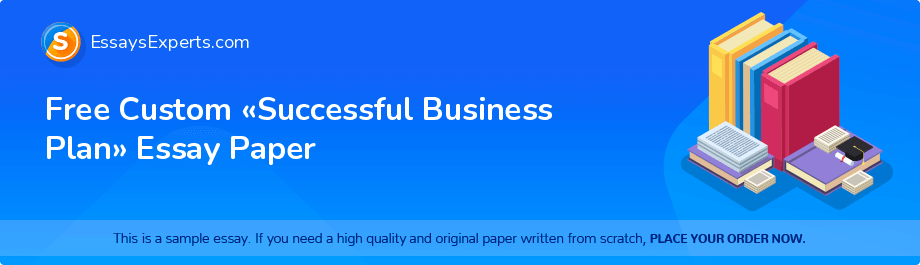 Free Essay Sample «Successful Business Plan»