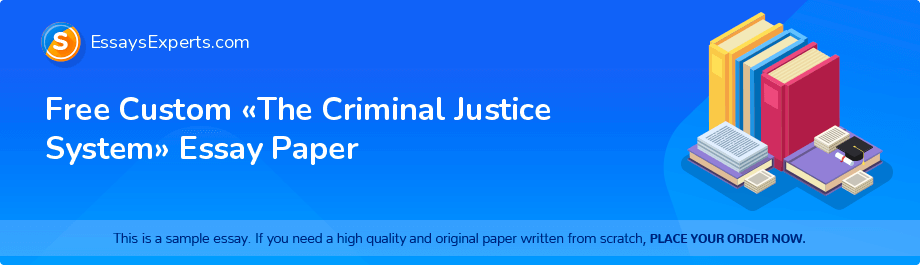 Free Essay Sample «The Criminal Justice System»