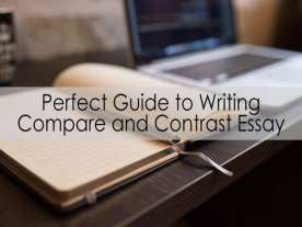Perfect Guide to Writing Compare and Contrast Essay